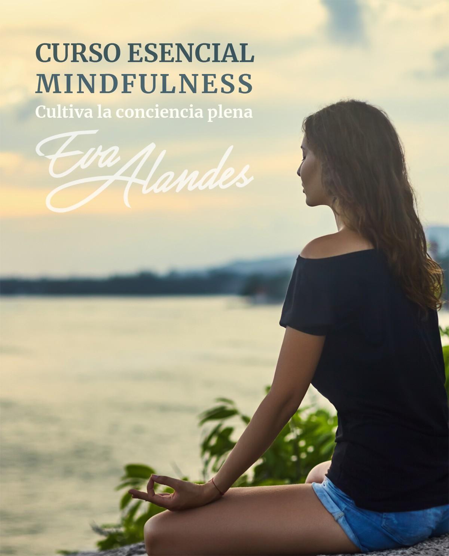 portada dossier Curso Esencial Mindfulness